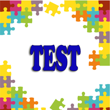test ley 55/2003