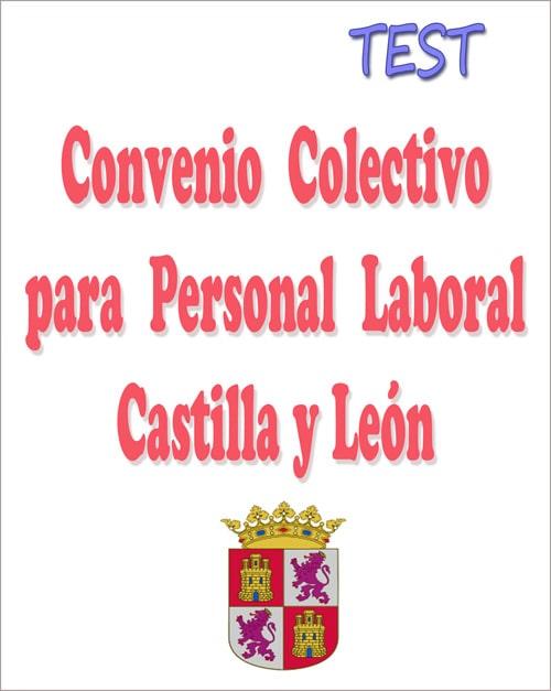 test convenio colectivo personal laboral Castilla y León